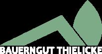 Thielicke_Logo-ohne